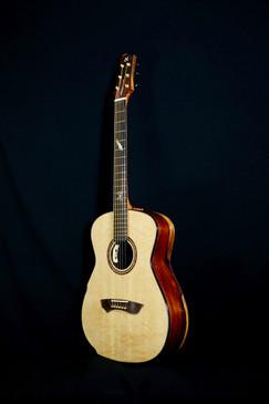 AdamCHAN Guitars S0607 #011 1.jpg