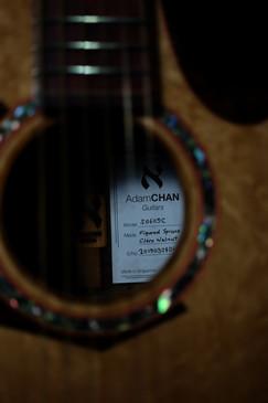AdamCHAN Guitars #14-15.jpg