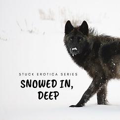 Snowed In Deep1smaller.jpg