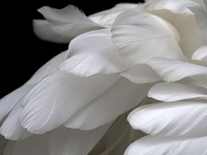 Audio: Your Guardian Angel Will Do Anything For Your Forgiveness