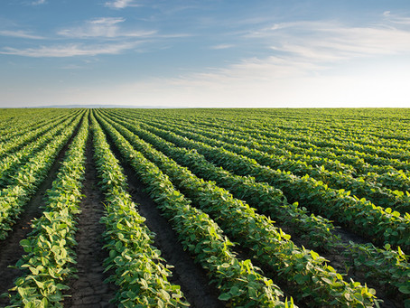 Waiver of recruitment requirements for certain occupations essential to Canada's food supply