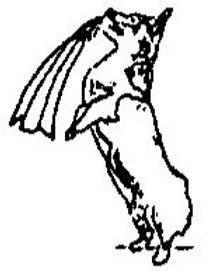 WRI Sketch Logo (149 x 198)_edited_edited.jpg