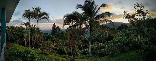pro landscape shot.jpg
