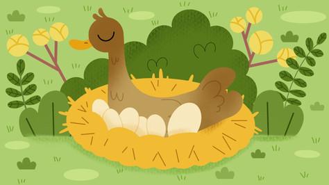 Ugly-Duckling-1.jpg