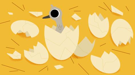 Ugly-Duckling-4.jpg