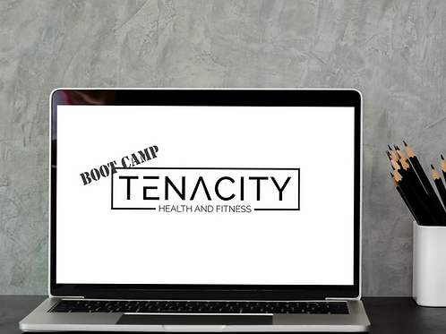 Tenacity Virtual Bootcamps!