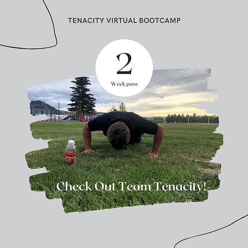 Tenacity Virtual Bootcamps!
