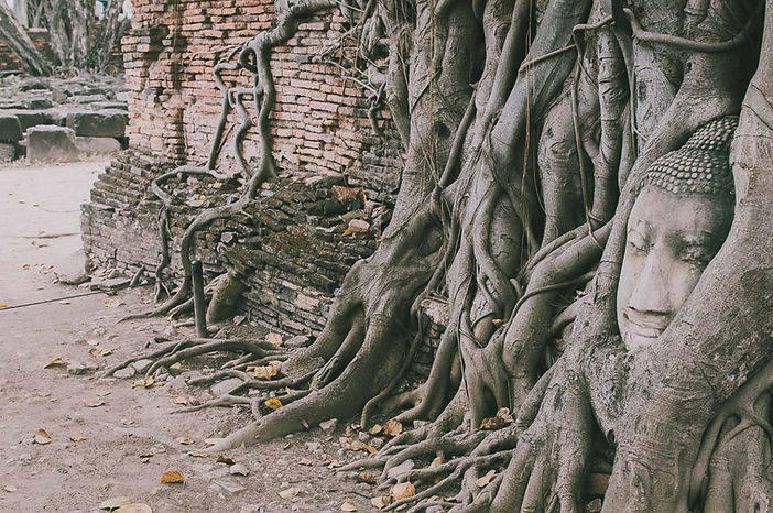 Ayutthaya-swiatynie-1.jpg