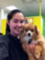 Dog grooming and Doggie Daycare Maple Ridge Port Coquitlam Pitt Meadows