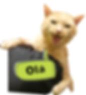 KittyOlaSm.jpg