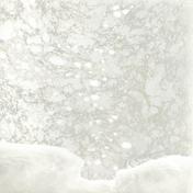 Phenomenon - Photopolymer gravure, 19.5 X 27.5cm