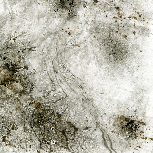 Come Down - Monotype, Mud and Water, 19.5 X 27.5cm