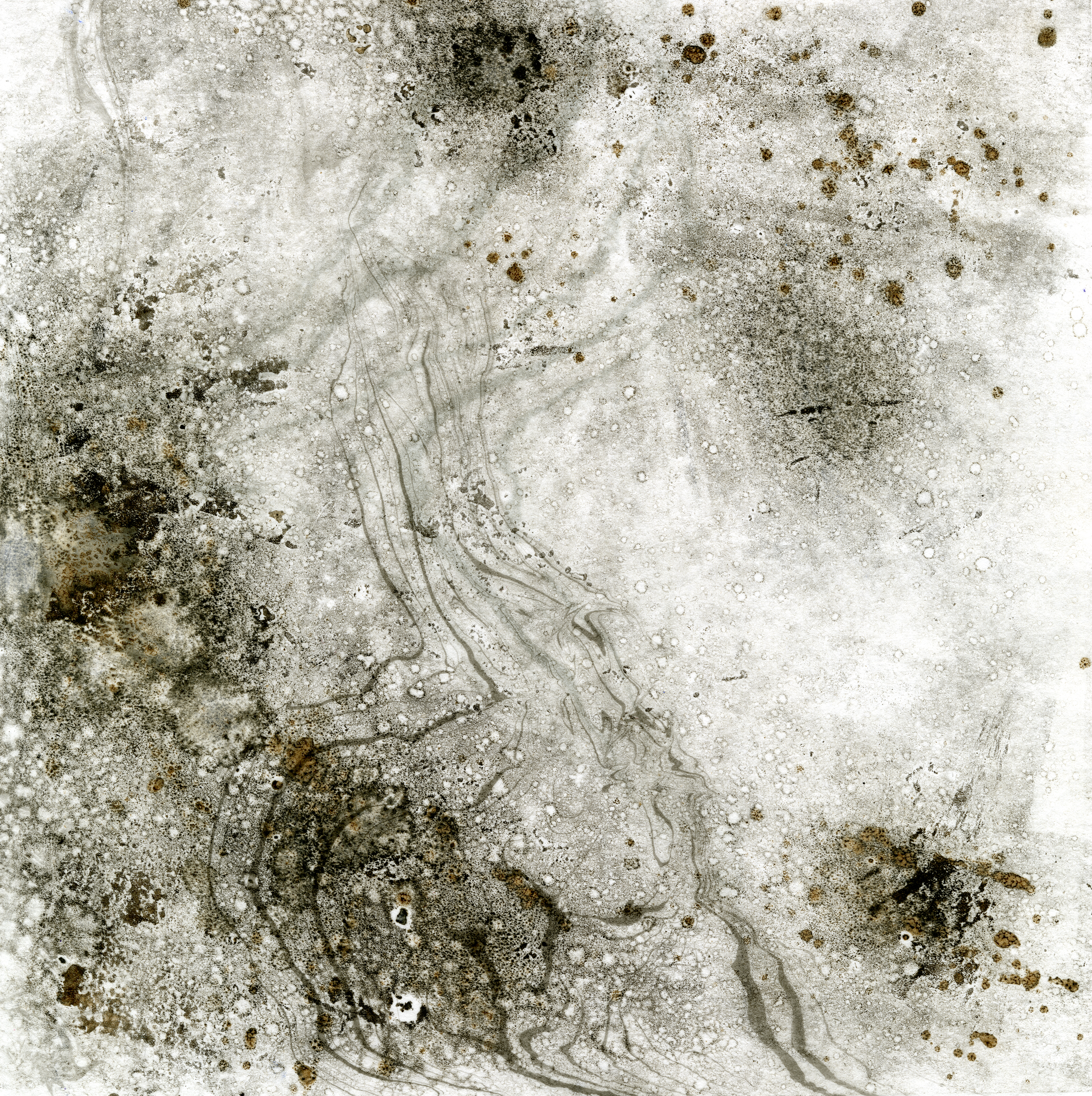 Alison Grant, Artist, Scotland