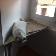 Etagère à chat habillée de toile de jute