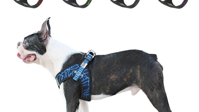 Dog Pet Harness Collar for Large Medium Small Dog