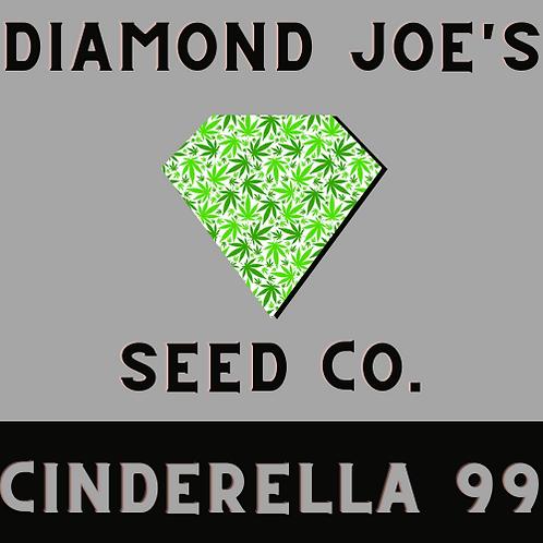 Cinderella 99