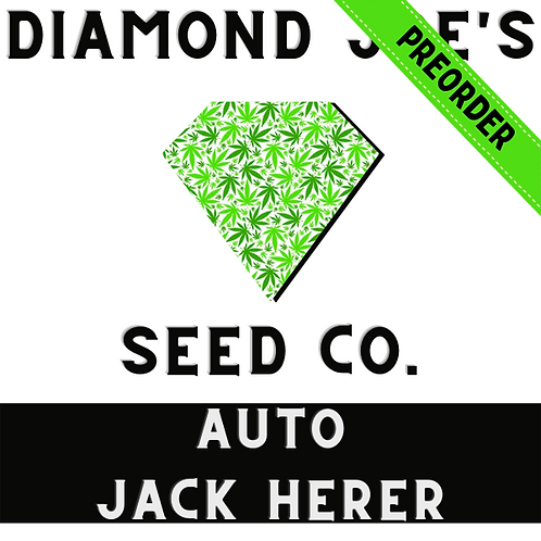 Auto Jack Herer fem ** pre order will be shipped in late July