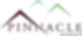 pinnacle_group_logo.png
