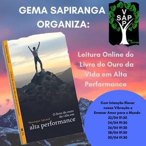 GEMA Sapiranga RS cria atividade sobre o Livro de Ouro