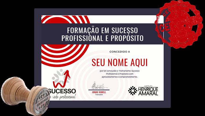 certificado-sucesso-ilustrativo-2.png