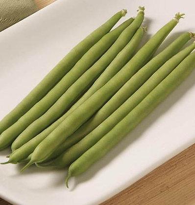 Haricot vert Jade - Semences