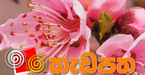 Kadapatha September 2020