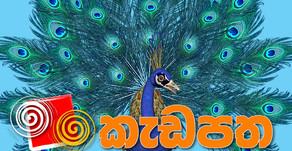 Kadapatha August 2020