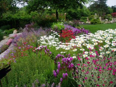 An East Dennis garden in full bloom