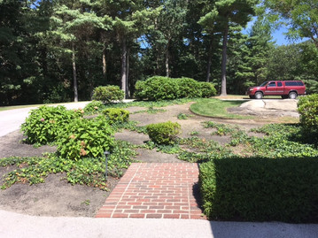 """Before: Forlorn and neglected driveway """"planting."""""""