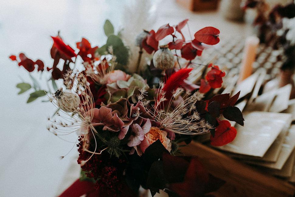 la-fleur-de-chardon.jpg