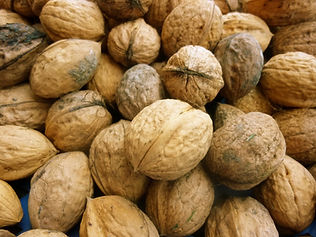 Fresh-Walnuts_edited.jpg