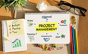 Project Management and Facilitation