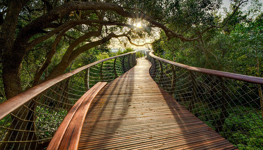 Jardim Botânico de Kirstenbosch
