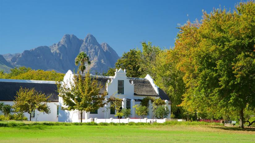 198028-Stellenbosch.jpg