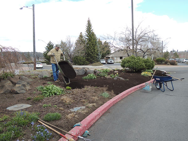 Customer Before Using Garden Mix Compost