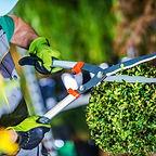 jardineros.jpg