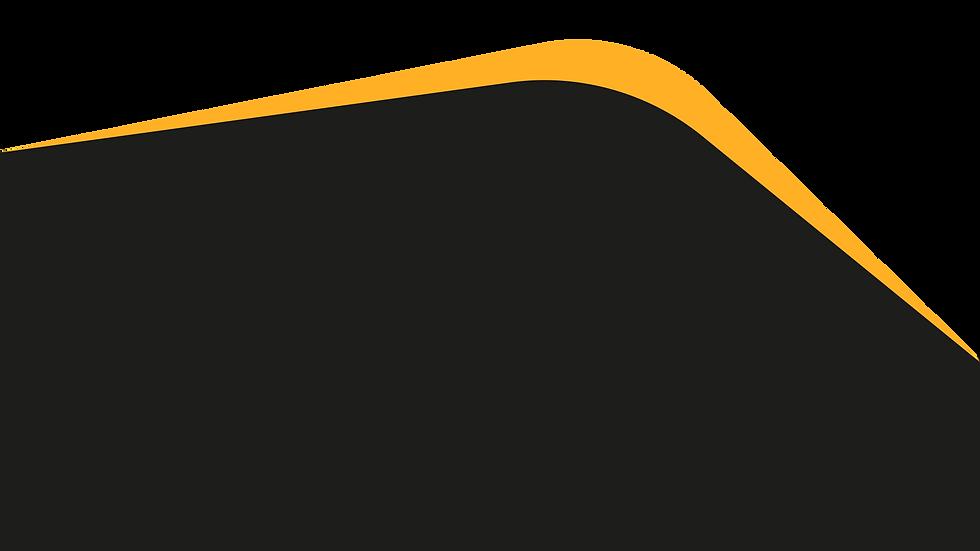 black orange tamplate lvmh png-01.png