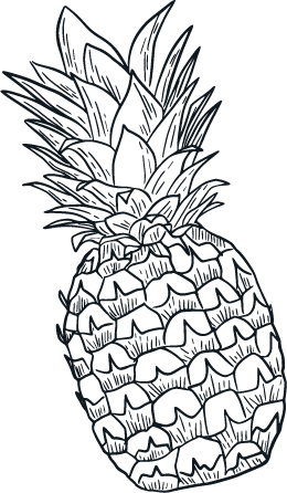 pineapple-bk@4x.png