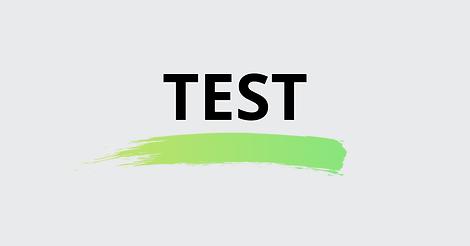TEST-DIG-SELV-4.png