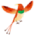 _Colorful Bird.webp