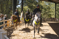 Mounted Atlanta Police demonstration