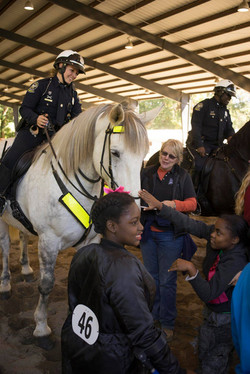 Time to meet the police's horses