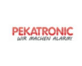 Pekatronic-Logo.jpg