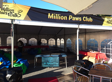 RSPCA's Million Paws Club