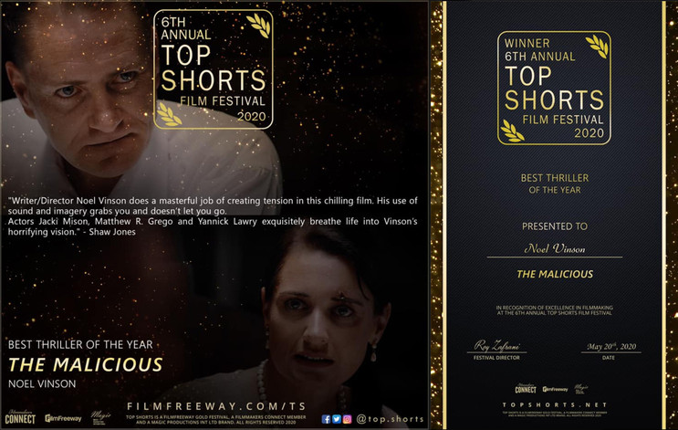 """Top Shorts - Best Thriller 2020 """"The Malicious"""""""