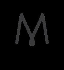 MacomLogo_with_group_metropolis.png