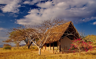 Lualenyi Camp 2 days tsavo west safari