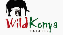 Kenya safaris, wild kenya safaris, safari from diani beah