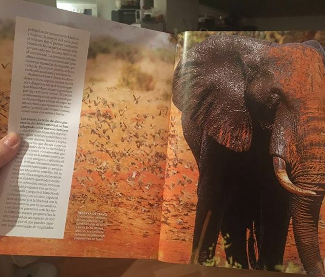 Shazaads elephant photo in national geographic magazine