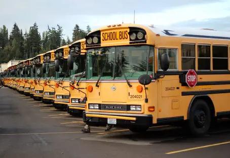 School Bus Update 🚍